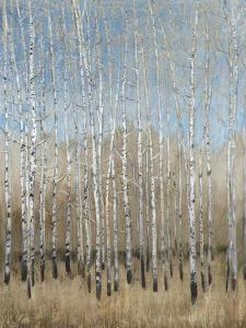 Dusty Blue Birches I by Tim OToole