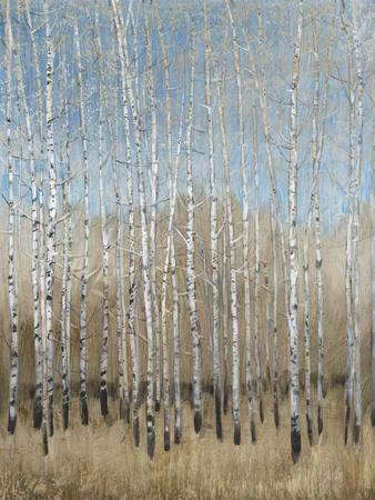 Dusty Blue Birches I