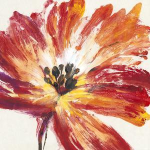 Fleur Rouge I by Tim OToole
