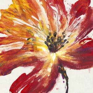 Fleur Rouge II by Tim OToole