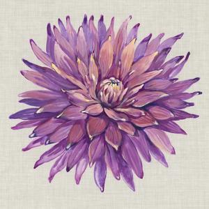 Floral Portrait on Linen II by Tim OToole