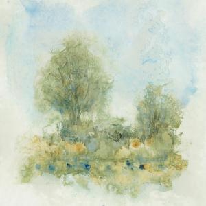 Fluid Landscape II by Tim OToole