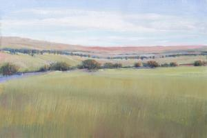 Hill Country I by Tim OToole