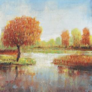 Lake Reflections I by Tim OToole