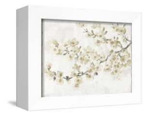 Neutral Cherry Blossom Composition I by Tim OToole