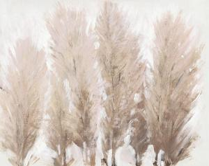 Pampas Grass II by Tim OToole