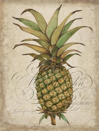 Pineapple Study I by Tim OToole
