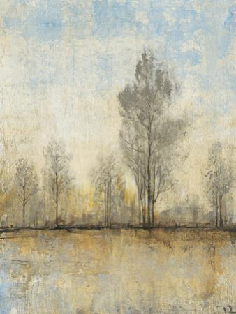 Quiet Nature I by Tim OToole