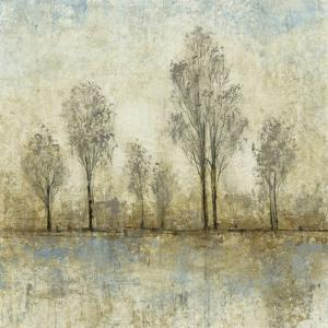 Quiet Nature III by Tim OToole