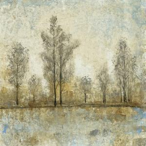 Quiet Nature IV by Tim OToole