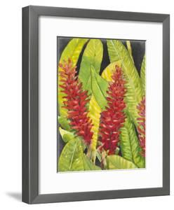 Red Tropical Flowers I by Tim OToole