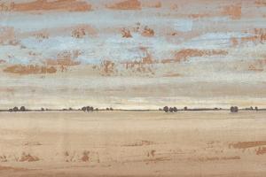 Southwest Vista II by Tim OToole
