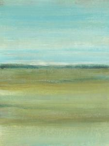 Terra Verde I by Tim OToole
