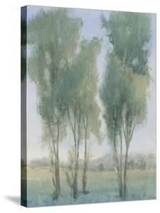 Tree Grove II by Tim OToole