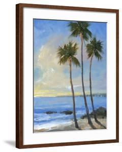 Tropical Breeze II by Tim OToole