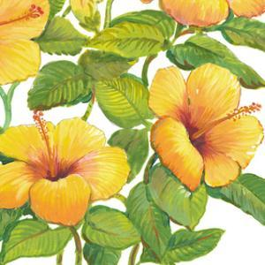 Watercolor Hibiscus IV by Tim OToole