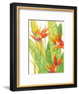 Watercolor Tropical Flowers III by Tim OToole