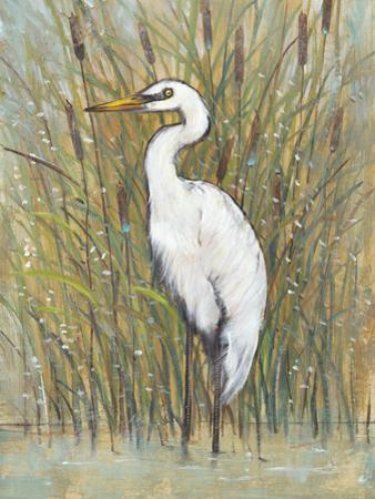 White Egret I by Tim OToole