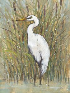 White Egret I by Tim OToole
