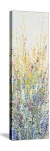 Wildflower Panel II by Tim OToole