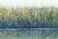 Wildflower Panel II-Tim OToole-Art Print