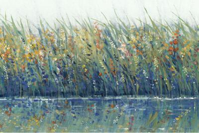 Wildflower Reflection I by Tim OToole
