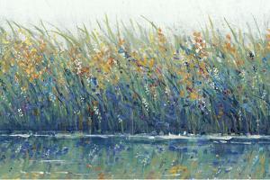 Wildflower Reflection II by Tim OToole