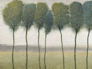 Row of Trees I by Tim