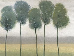 Row of Trees II by Tim