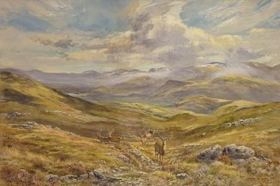 Cairngorms from Kinrara, 1988