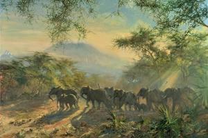 Elephant, Kilimanjaro, 1995 by Tim Scott Bolton