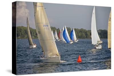 A Sailboat Race in Toronto Harbour Area