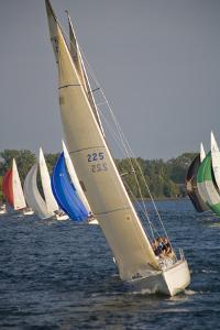 A Sailboat Race in Toronto Harbour Area by Tim Thompson