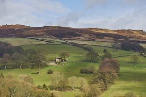 Derwent Valley, Peak District National Park, Derbyshire, England, United Kingdom, Europe by Tim Winter
