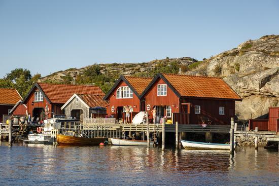 Timber Houses, Grebbestad, Bohuslan Region, West Coast, Sweden, Scandinavia, Europe-Yadid Levy-Photographic Print