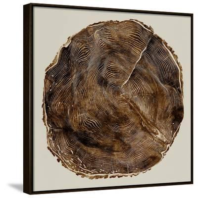 Timber II-Danielle Carson-Framed Canvas Print