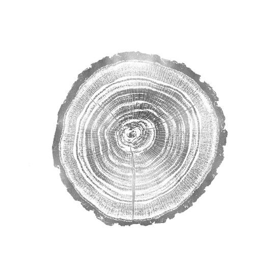 Timber Silver II-Danielle Carson-Giclee Print