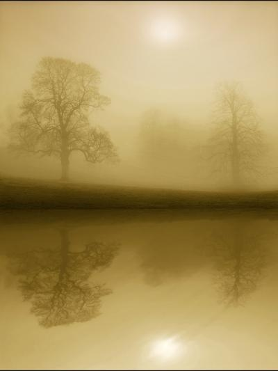Timeless Winter-Adrian Campfield-Photographic Print