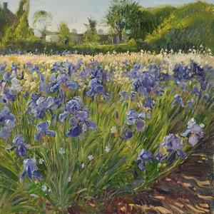 Above the Blue Irises by Timothy Easton
