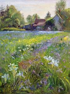 Dwarf Irises and Cottage, 1993 by Timothy Easton