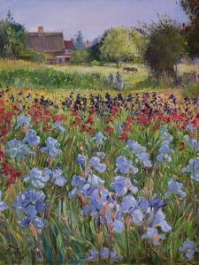 Entrance to Burgate Green by Timothy Easton
