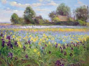 Farmstead and Iris Field, 1992 by Timothy Easton