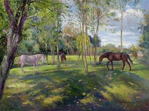 In the Rectory Paddock, 1993 by Timothy Easton