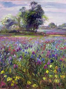 Irises and Distant May Tree, 1993 by Timothy Easton