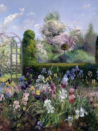 Irises in the Formal Gardens, 1993