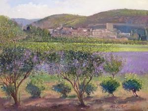 Lavender Seen Through Quince Trees, Monclus by Timothy Easton