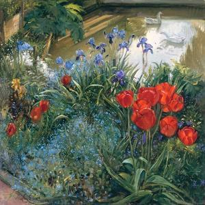 Red Tulips and Geese by Timothy Easton