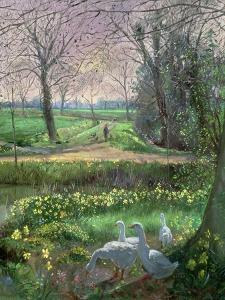 Spring Walk by Timothy Easton