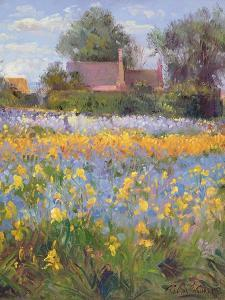 The Enclosed Cottages in the Iris Field by Timothy Easton