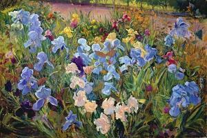 The Iris Bed, 1993 by Timothy Easton